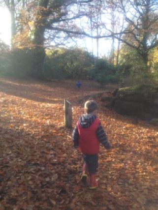 Autumnal Explore