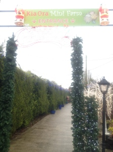 Kia Ora Christmas Entrance