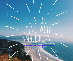 flying with small kids