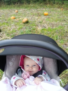 Attempt at an autumnal photo of Laoise (Image: Sinead Fox)