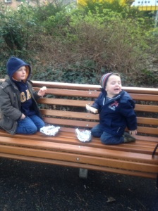 Merrion Square Picnic