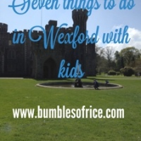 Seven things to do in Wexford with kids