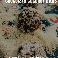 Chocolate Coconut Bites (Davina's Power Balls) sugar-free and delicious