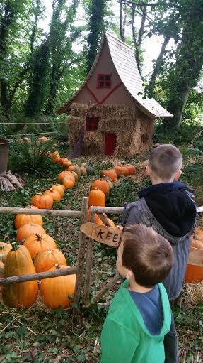 ballycross witch house